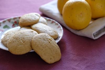 biscotti-zenzero-limone